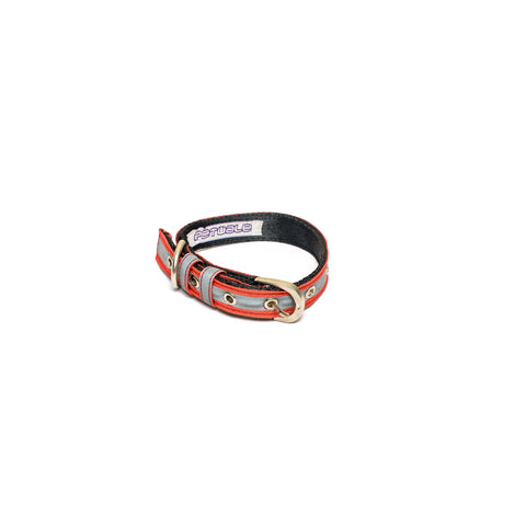 Reflective Red Belt Collar