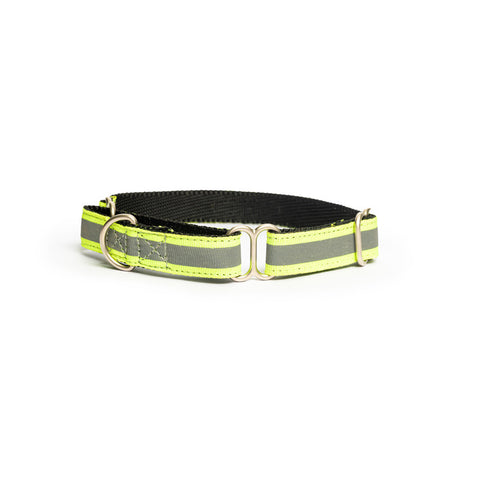 Reflective Green Martingale Collar