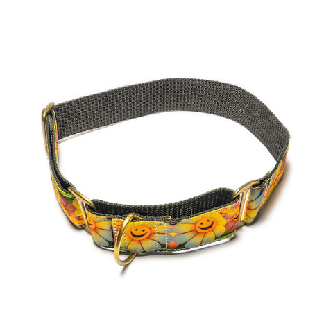Sunshine Nylon Martingale Collar