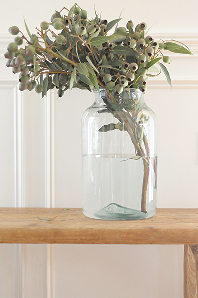 Vintage European Pickling Jars with Eucalyptus Pods
