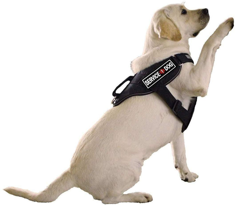 Dogline Service Dog 3D Rubber Patches