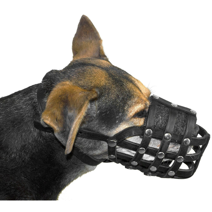 Viper Echo Leather Basket Dog Muzzle