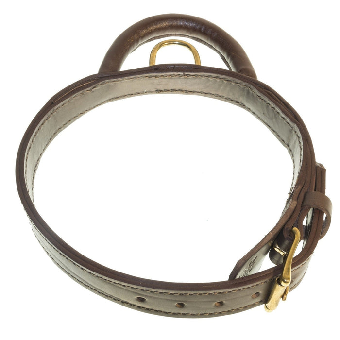Viper Leather Two-Ply Collar + Built-in Handle