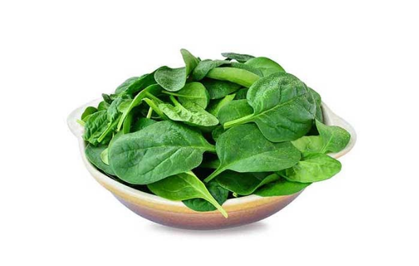10+ Healthy and Nutritious Leafy Green Vegetables