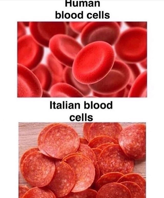 Italian Blood Cells