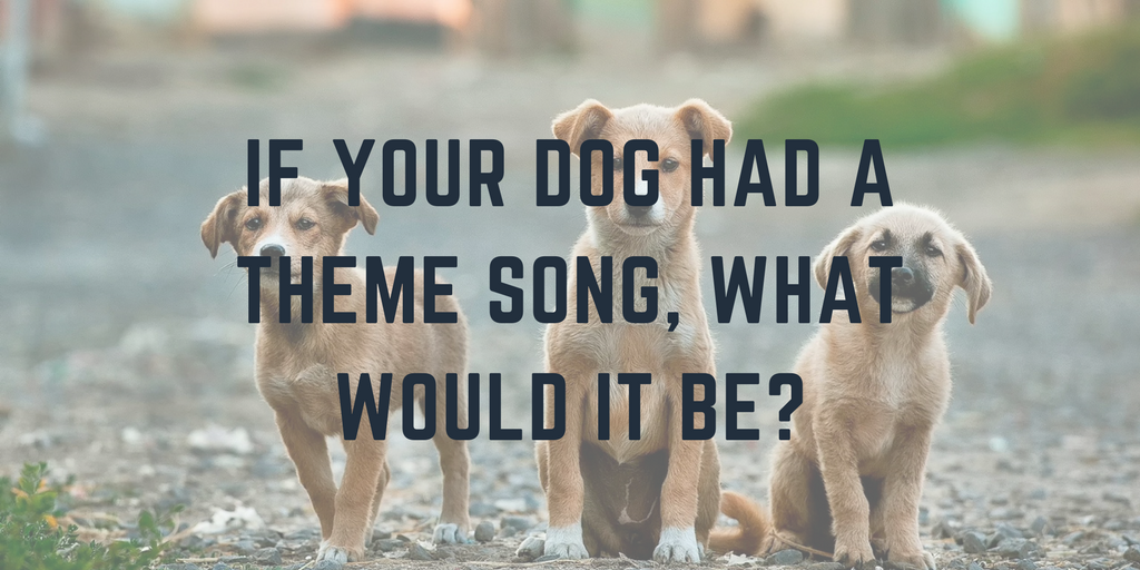 If your dog had a theme song