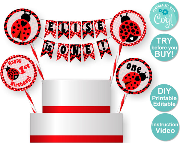 Ladybug 1st Birthday Cake Topper - Ladybug First Party Decorations - DIY Printable Decorations - MADE to MATCH - Banner, Invitation, Signs, Cupcake Toppers, Favor Tags