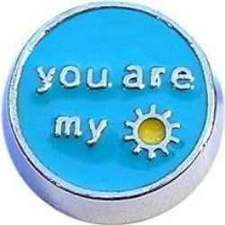 You are My Sunshine Floating Charm