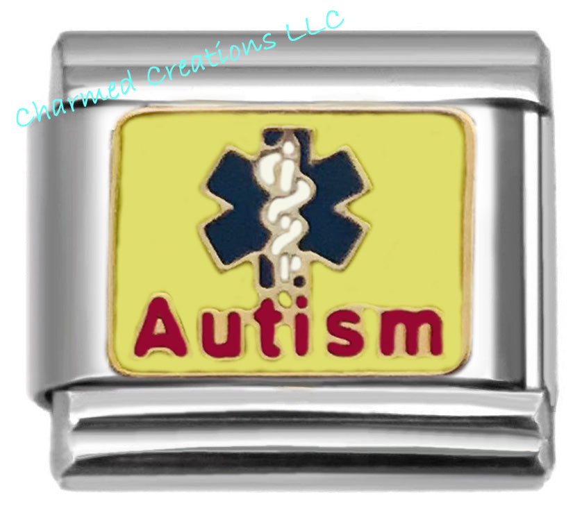 Autism Medical Alert 9mm Italian Charm