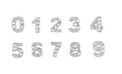Silver Numbers Floating Charm