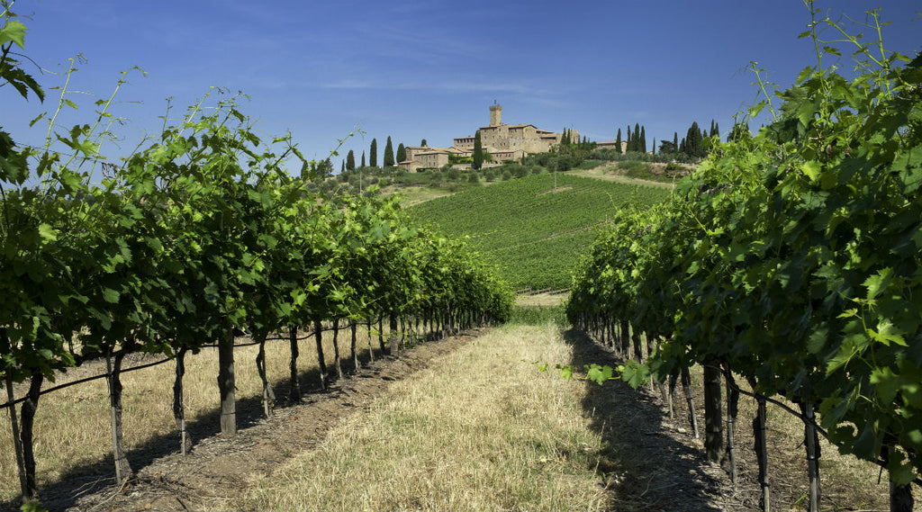 THE WINE LOVER'S GUIDE TO THE FINEST ACCOMMODATIONS AMONGST THE WORLD'S JUICIEST VINEYARDS