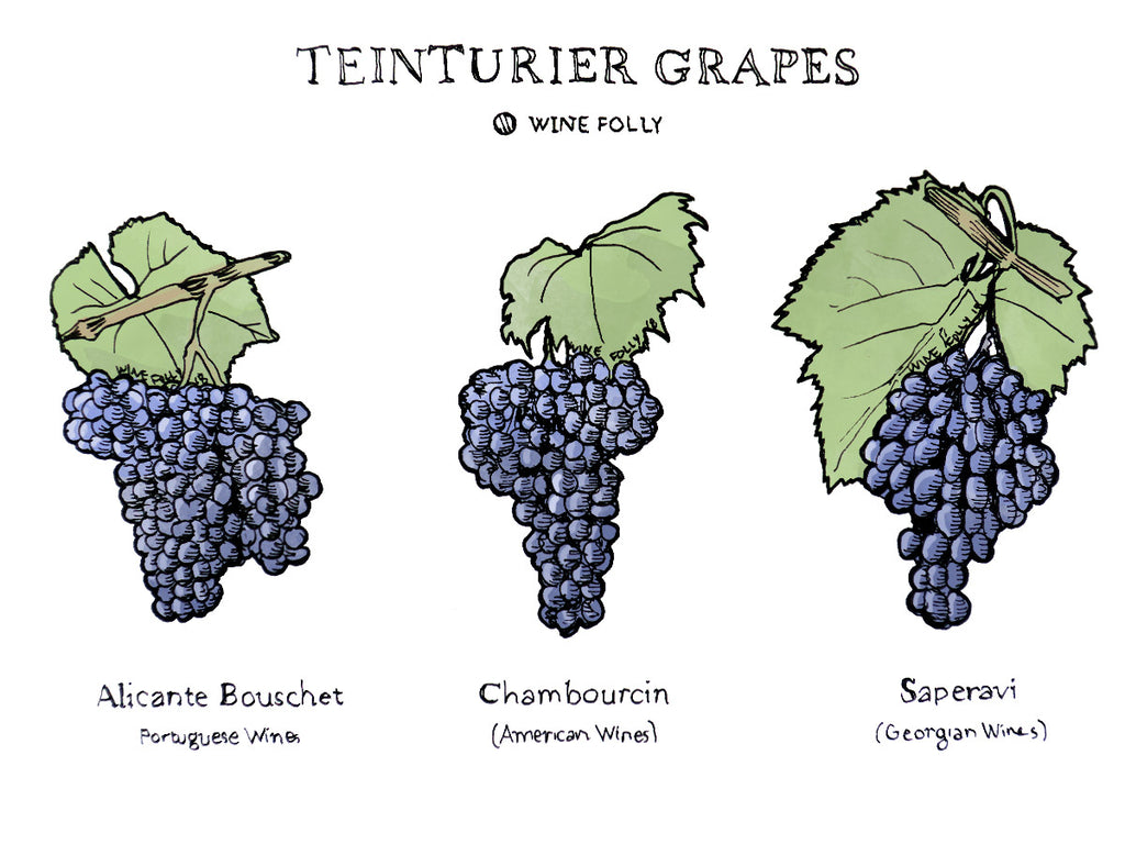 Wine Term: Teinturier Grapes