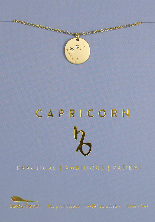 Necklace | Zodiac | Capricorn