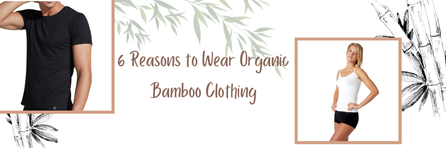 6 Reasons to Wear Organic Bamboo Clothing Banner