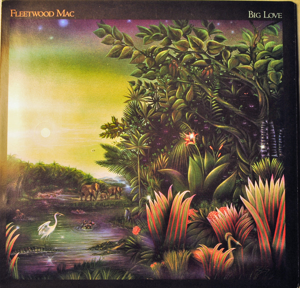 FLEETWOOD MAC  BIG LOVE