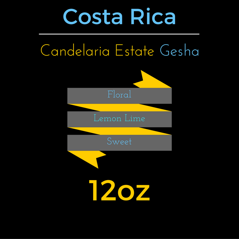 Costa Rica Candelaria Estate Gesha - hero-in coffee