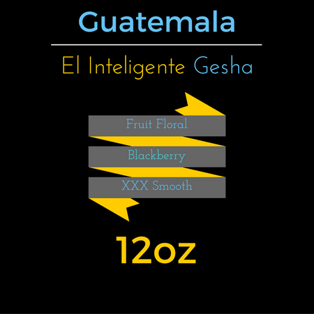 Guatemala El Inteligente Gesha - hero-in coffee