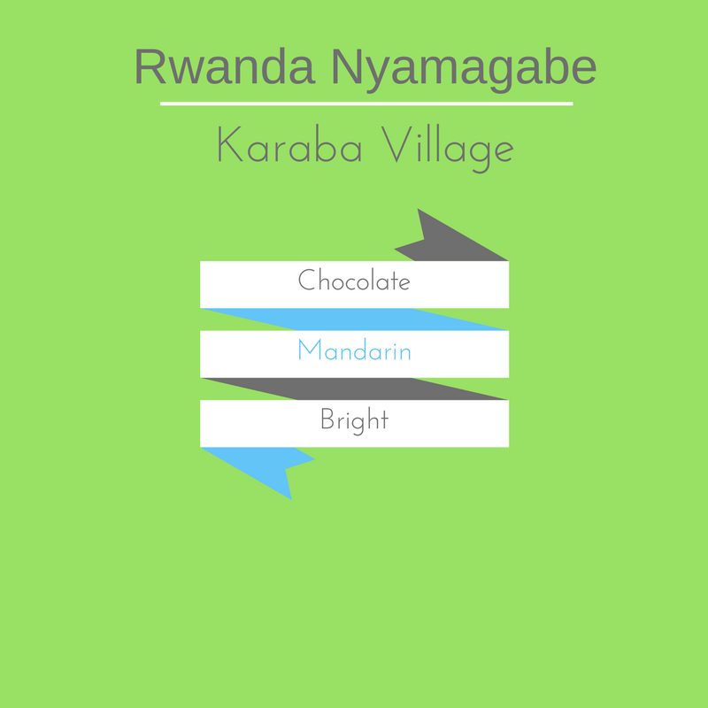 Rwanda Nyamagabe - FT Organic - hero-in coffee