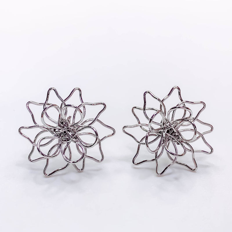 Stunning Chic Wire Earrings, Silver