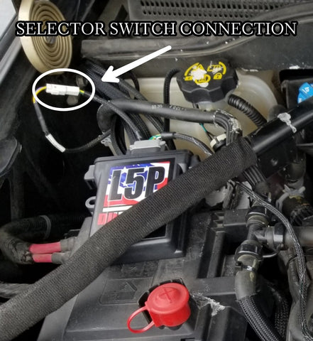 Switch Connection