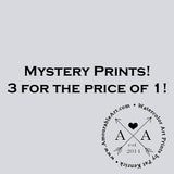 "Mystery Prints! 8""X10"" matted to 11""X14"""