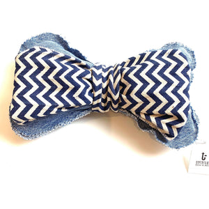 Dog Bone Chevron Squeaky Toy