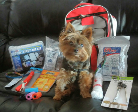 Pet Survival Kit-Dog,Cat