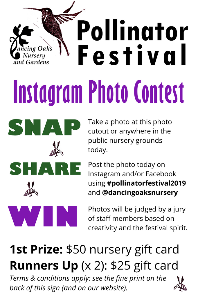 Pollinator Festival Photo Contest - Dancing Oaks Nursery and Gardens