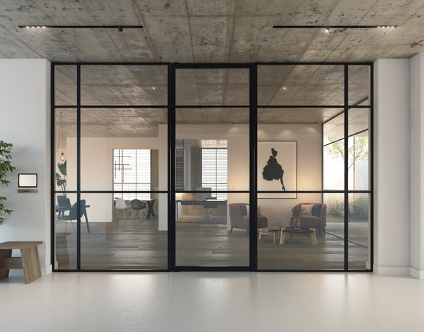 Portapivot 6530 pivot door + Portapivot 3030 fixed glass partitions