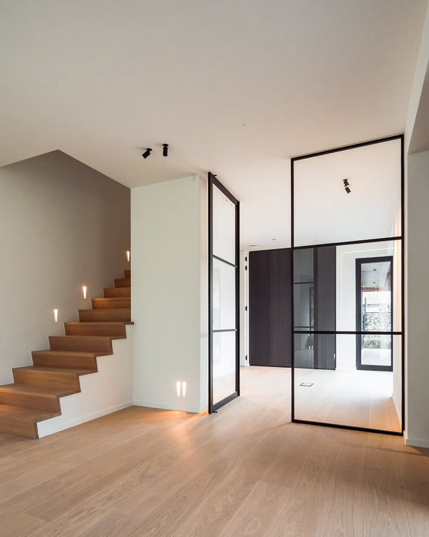 Glass and aluminium pivot door