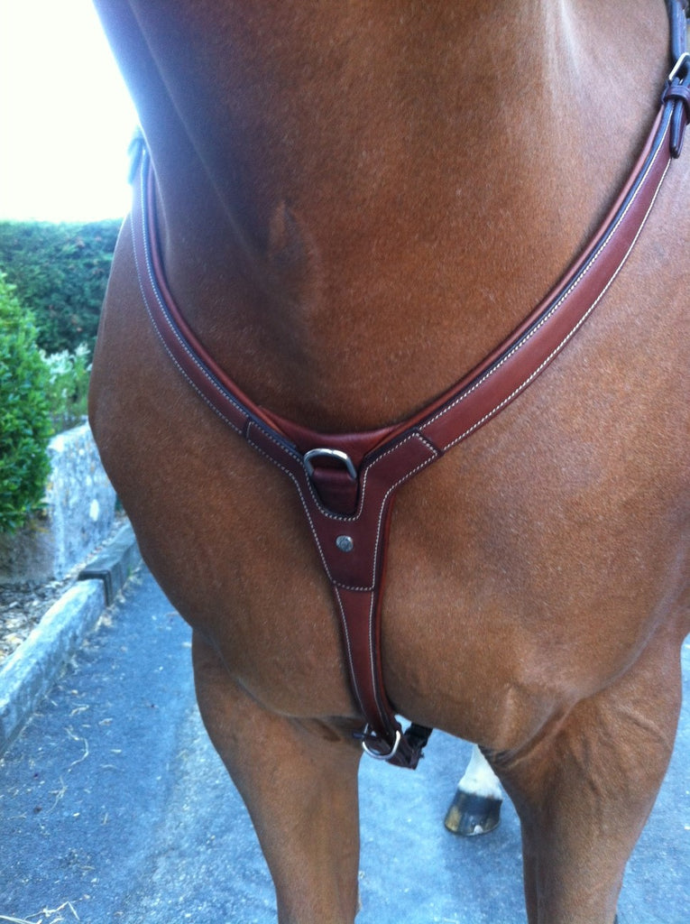 Antarès 3 Point Breastplate