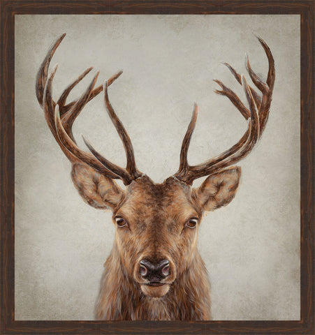 STAG PRESENCE Wall Art 48.5 x 45.5 inch framed size (approximately)