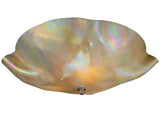"Modern Country Ceiling Lights Meyda 114167 - 16""W Metro Beige Iridescent Organic Art Glass Flushmount Light"