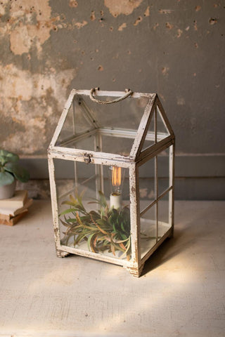 Metal And Glass Terrarium Table Lamp