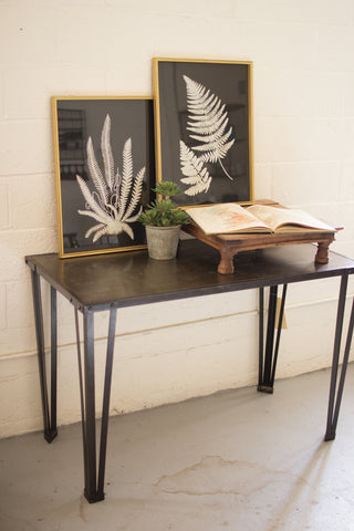 Set Of Two Black And White Fern Prints Under Glass