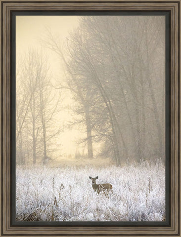 White Tailed Deer in Fog Wall Art 30.25 x 22.75 inch framed size (approximately)