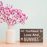 JennyGems| All You Need Is Love And Bunnies | Wooden Box Sign | Bunny Rabbit Home Decor Gift | Bunny Mom | Bunny Lover | Bunny Signs | Made in USA