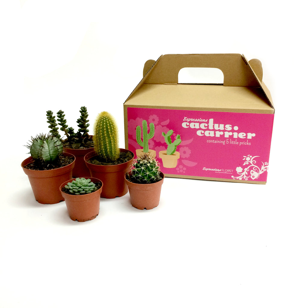 Cactus Carrier