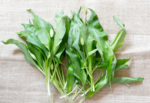 wild garlic leaves 150g now in stock 26.02.20