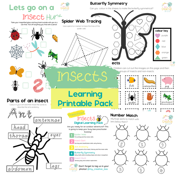 Preschool Insects Digital Learning Pack