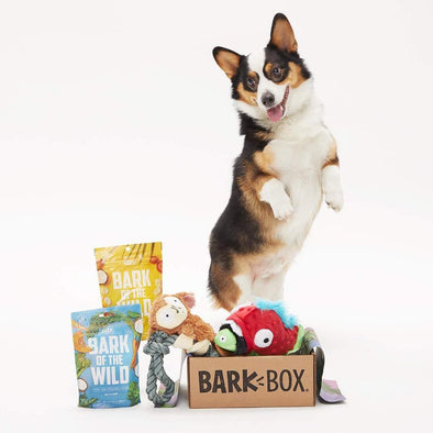 BarkBox Starter Kit Assortment Dog Toys and Treats