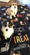 """Corgis in Costumes"" Fleece Blanket 