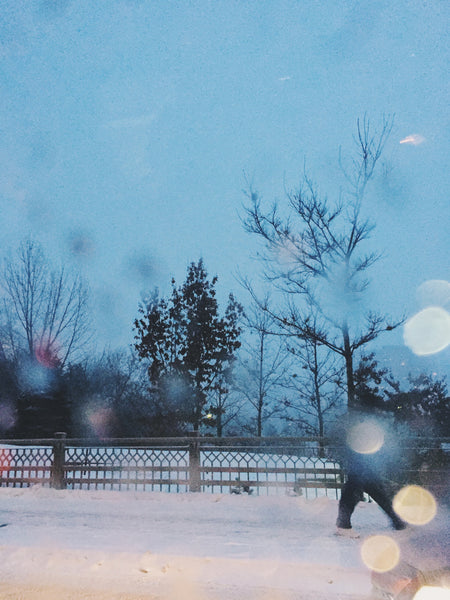 Photography by Julia Martin of a snowy park at dusk part of her OVERSHARE Series at PDA PROJECTS