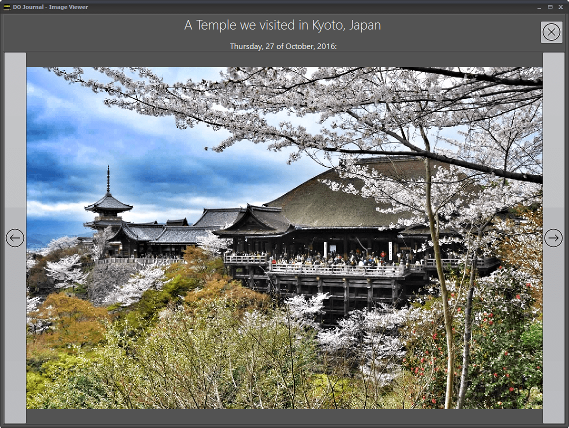 DO Journal - Image Viewer