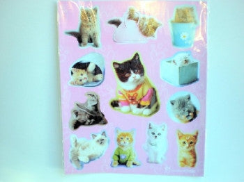 Kitten Sticker Sheets (2)