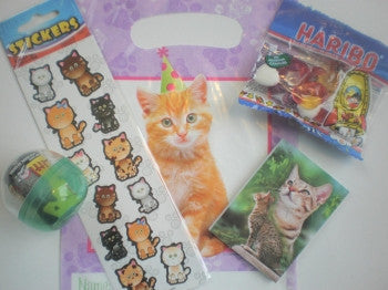 Kitten Party Bag