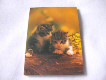 Kitten/Cat Notebook