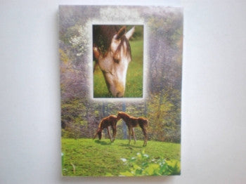Horse and Pony Memo Pad