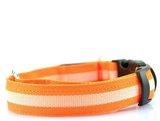 Safety LED Dog Collar Free + Shipping (7 Colors)