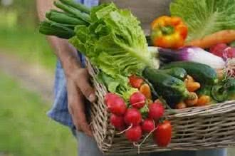 Shop Local with Get Fresh & Fruity